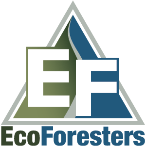 EcoForesters